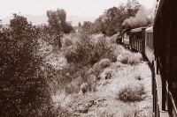 Photographer In The Lens, Bill Birkemeier: Note Card Silverton Railroad Sepia