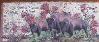 BookMarkCard Friends: William S. Hart Park Buffalo SALE