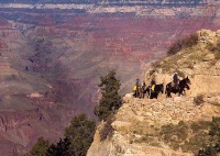 Photographer In The Lens, Bill Birkemeier: Note Card Grand Canyon, Returning from Phantom Ranch Color