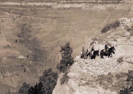 Photographer In The Lens, Bill Birkemeier: Note Card Grand Canyon, Returning from Phantom Ranch Sepia
