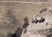 Photographer In The Lens, Bill Birkemeier: Art Print Grand Canyon, Returning from Phantom Ranch Sepia