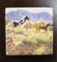 TXLC Custom Tile Magnet Horse: Claire Goldrick Horses at Big Wash Special Order