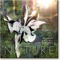Evie Cook Digital Prints: Nature