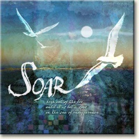 Evie Cook Digital Prints: Soar