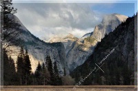 Photographer In The Lens, Bill Birkemeier: Note Card Yosemite Valley Color
