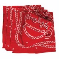 ZSold Boss Lady by Blue Q: Bandana or Napkin Dozen DISCONTINUED