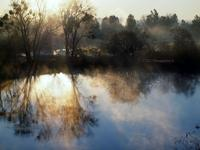 Art Photographer Cindy Quigley: N Morning Mist Past Featured Artist