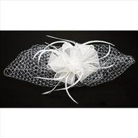 Fascinator: A Clip of Sinamay and Pure White Netting